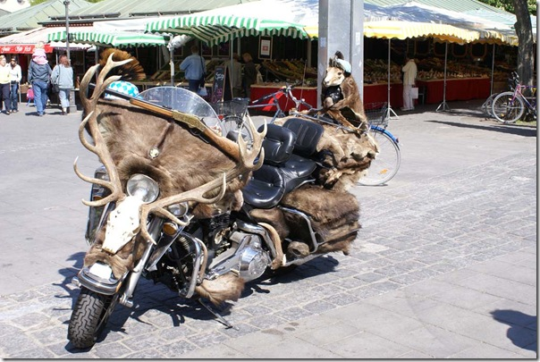 big_rat_bike_05